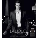 Lalique mannelijke lijnen